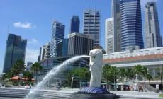 Học và thực tập hưởng lương tại Singapore  và Úc