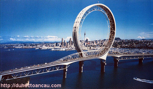 Dk-o-lai-lam-viec-sau-khi-TN---NZ