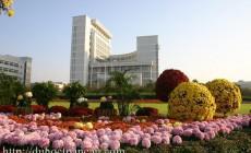 Học bổng toàn phần chính phủ Trung Quốc: Khóa Thạc sĩ Ngôn ngữ
