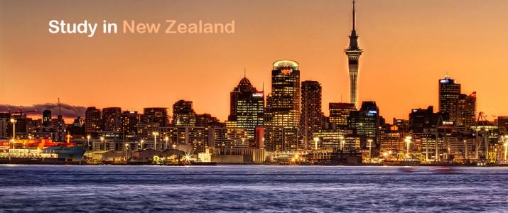 New-Zealand-715x300