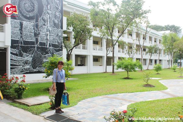 Sân sau của Đại học James Cook, Singapore