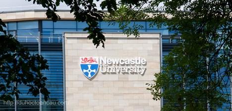 Du học Anh tại Trường Đại học Newcastle