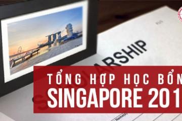cac-hoc-bong-singapore