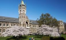 Điều kiện du học New Zealand năm 2016
