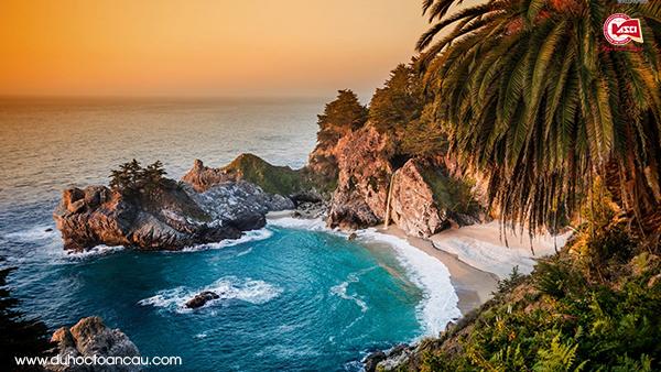 Palm-Cove