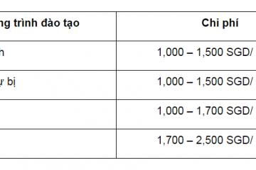 Mức học phí trung bình của các chương trình tại Singapore