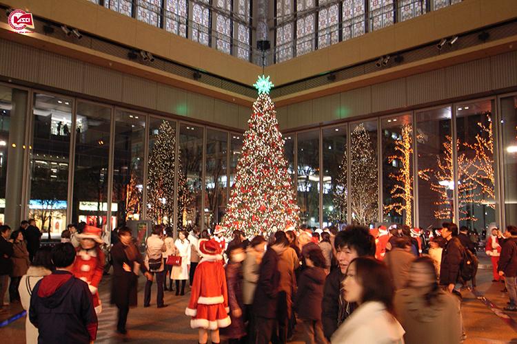Du học đón giáng sinh tại Mỹ