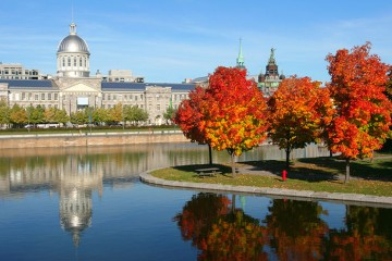 Làm việc định cư tại Canada sau khi tốt nghiệp