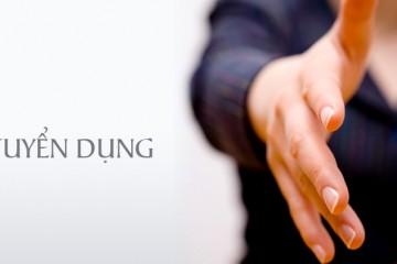 Tuyển dụng trưởng phòng marketing và seo website manager