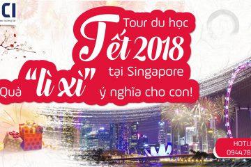 du-hoc-tet-singapore
