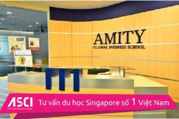 hoc-bong-amity-singapore-1-01