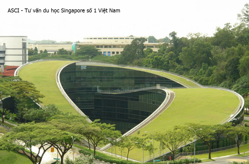 hoc-bong-nan-yang-singapore
