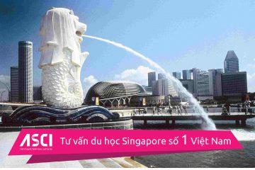 hoc-bong-singapore