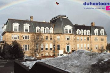Du học Canada tại Đại học New Brunswick – TOP 15 Các trường Đại học tốt nhất Canada
