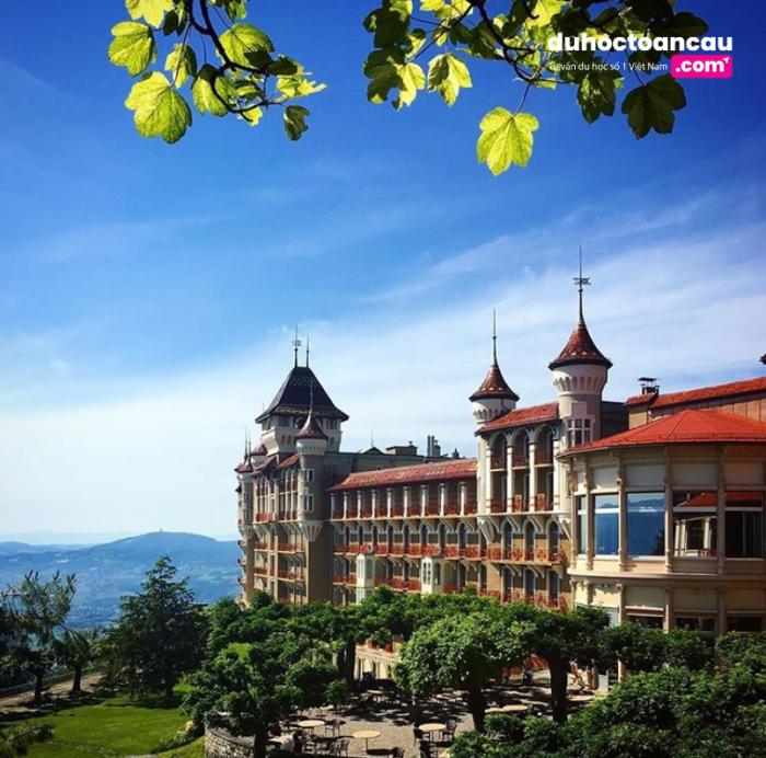 Swiss Hotel Management School (SHMS) là một trong 05 trường danh tiếng về đào tạo quản trị khách sạn của tập đoàn SEG