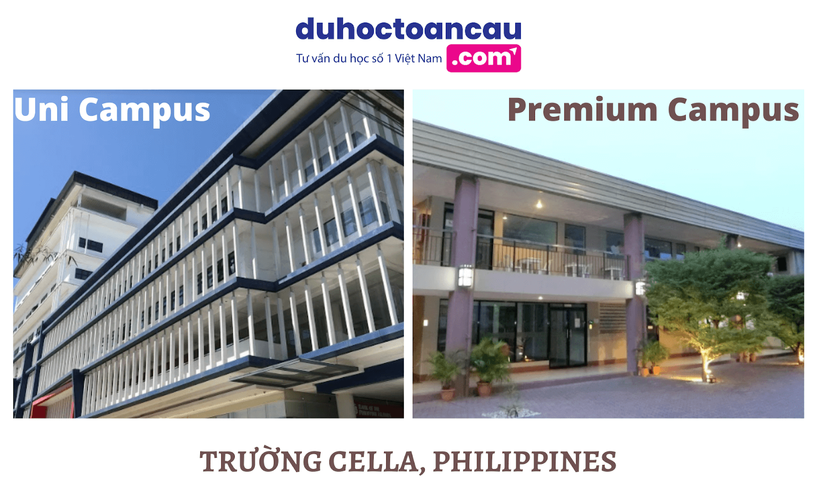 truong-cella-phillipines
