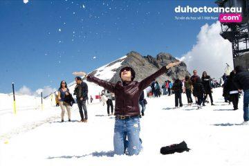 Đến đây bạn có thể lựa chọn quan sát cảnh quan tại núi tuyết hoặc tham gia trượt tuyết mạo hiểm